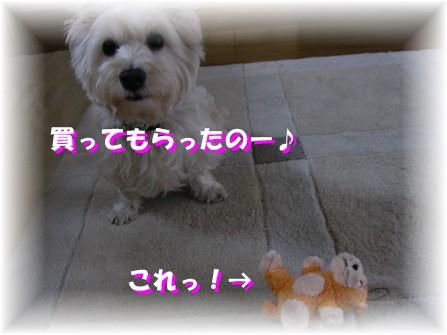f0039907_2232213.jpg