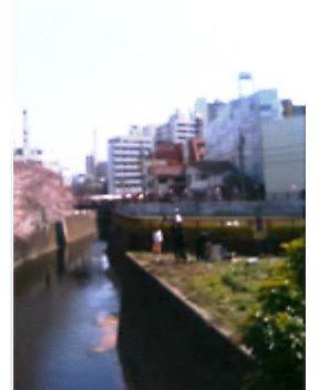 f0049594_14154749.jpg
