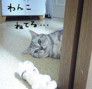 f0093501_20105946.jpg