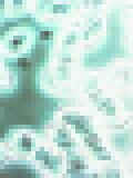 b0036608_27236.jpg