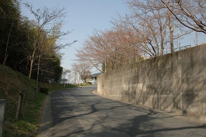 太宰府中学校_a0042310_8221191.jpg