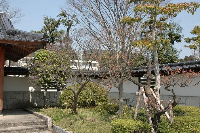 学業院中学校 (太宰府市)_a0042310_8525951.jpg