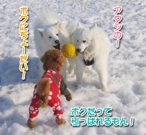 カッパと腹掛け_a0044521_2119414.jpg