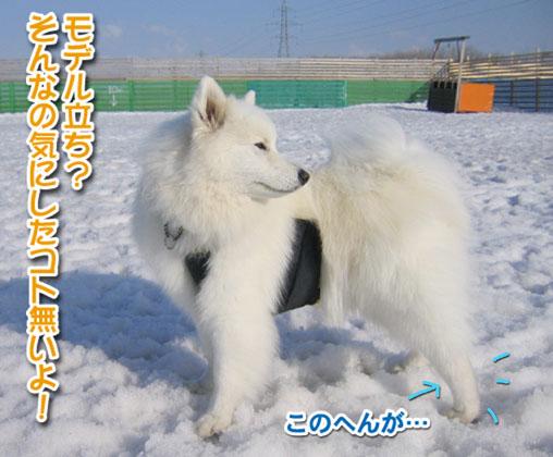 カッパと腹掛け_a0044521_2122113.jpg