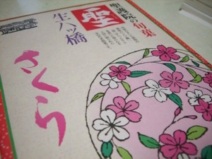 お花見しましょう♪_c0006826_7191383.jpg