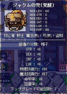 d0048430_336231.jpg