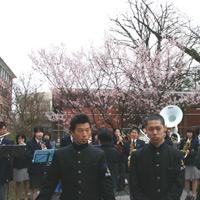 京都要庵歳時記 『巣立ちの春・・・同志社大学卒業式』(4)_d0033734_18342674.jpg