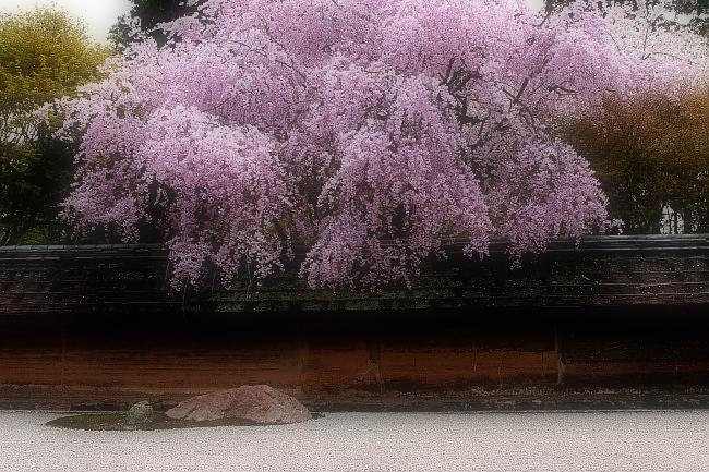 そうだ京都、行こう。 2_f0021869_01356100.jpg
