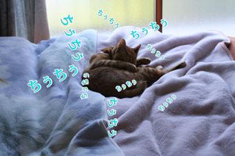 f0101903_1216317.jpg