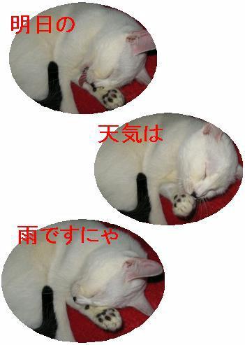 e0085147_030526.jpg