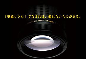 f0091659_21421435.jpg