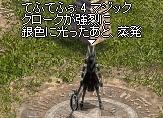 c0055665_2552494.jpg