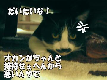 b0041182_8323062.jpg