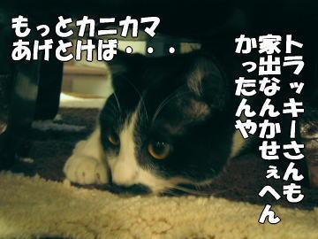 b0041182_832396.jpg