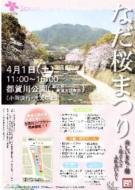 なだ桜まつり_d0013202_12551518.jpg