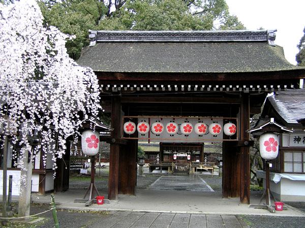 平野神社_e0048413_23718.jpg