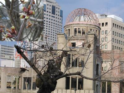 原爆ドームと桜と雀
