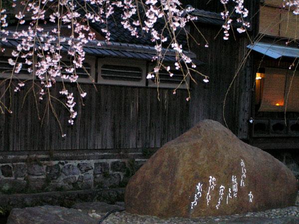 祇園白川のしだれ桜_e0048413_19175342.jpg