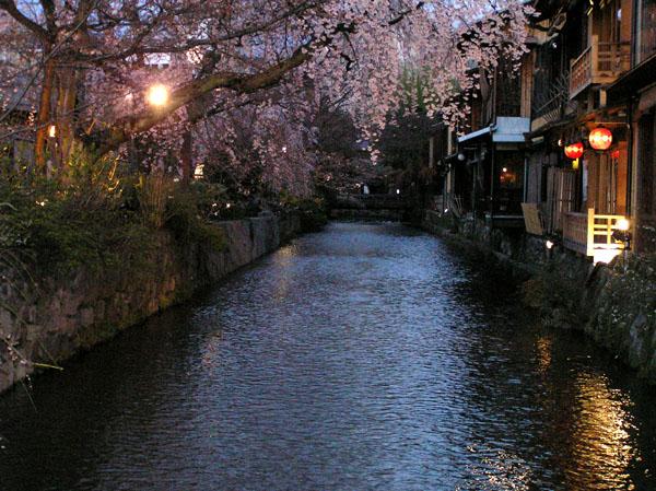 祇園白川のしだれ桜_e0048413_1917581.jpg