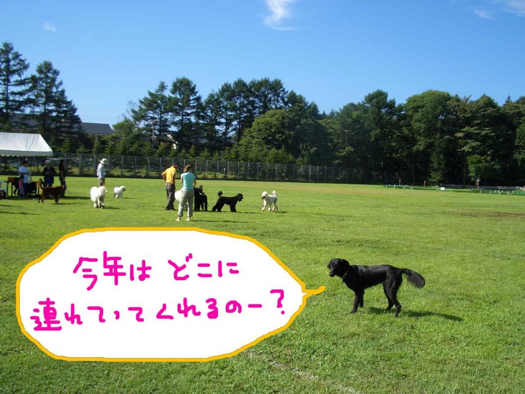 連休のお知らせ_f0098338_1235717.jpg
