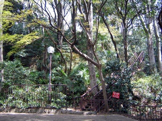 上野毛自然公園_f0091067_23463923.jpg