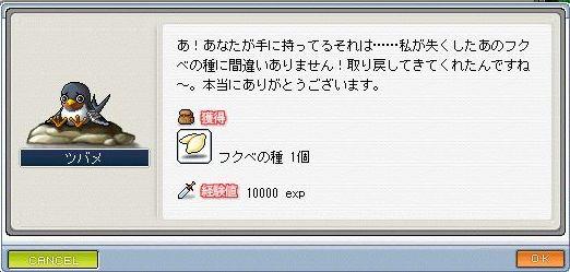 f0029998_14585711.jpg