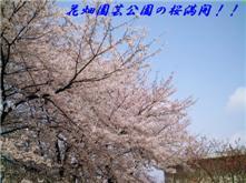 e0012724_1810393.jpg