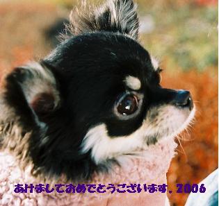 f0107226_22533168.jpg