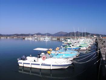 魚の町~門川町のご紹介です♪ : いちまる本舗