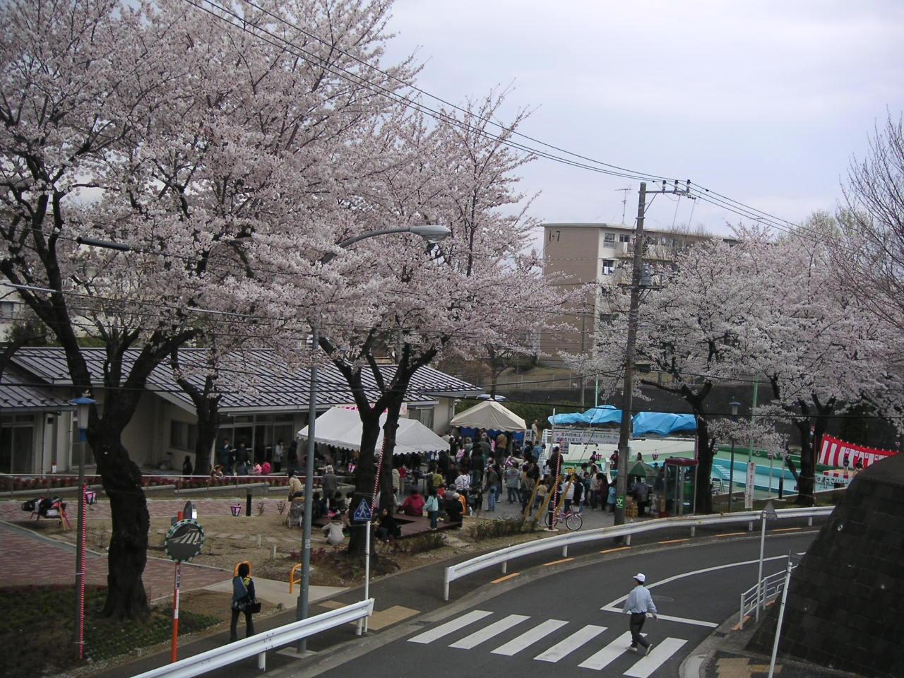 団地の桜祭り_e0017093_14301.jpg