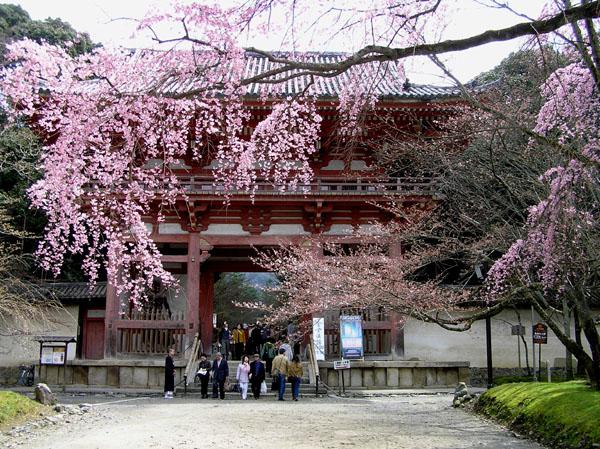 醍醐寺1_e0048413_22342166.jpg