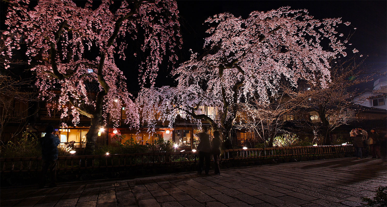 祇園白川 2_f0021869_014085.jpg