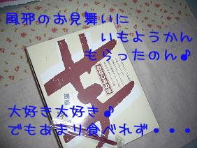 f0020777_21543188.jpg