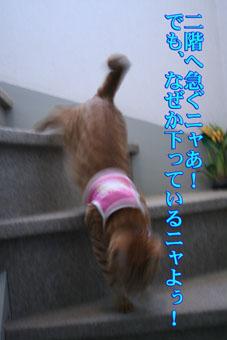 f0101903_14214916.jpg