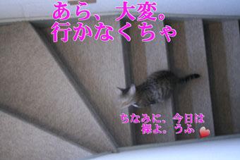 f0101903_14221650.jpg