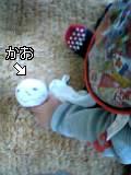f0087808_1424379.jpg