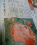 f0074659_22112684.jpg