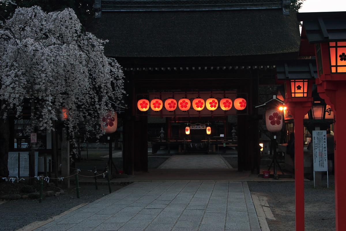 平野神社_f0021869_0384584.jpg