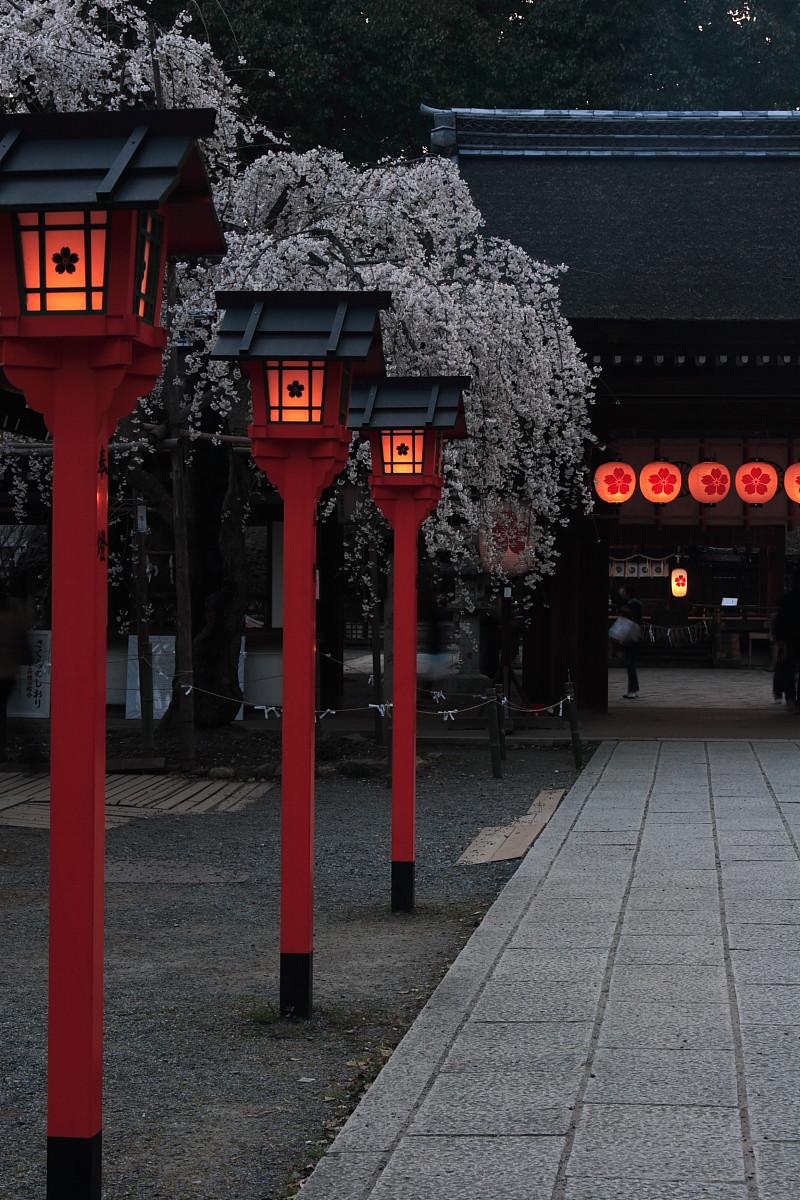 平野神社_f0021869_0393551.jpg