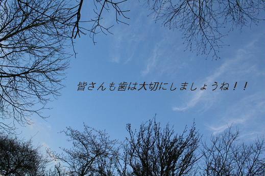f0018027_729967.jpg