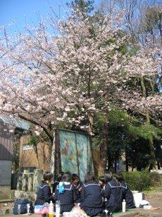 お花見(^.^)_f0067122_16285165.jpg