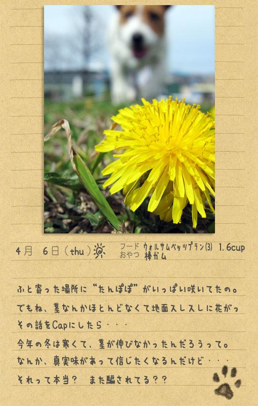 b0040323_0302159.jpg