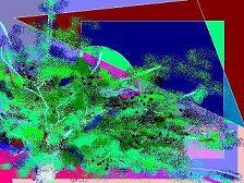 d0053828_23392112.jpg