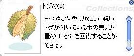 e0031532_1302323.jpg