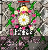 b0069938_1312215.jpg
