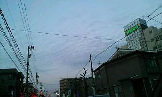 d0046549_1827360.jpg