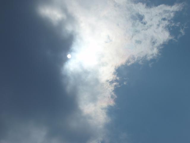 桜吹雪と彩雲_e0077521_13501812.jpg