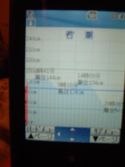 a0041128_1341279.jpg