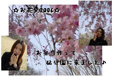c0043737_17132152.jpg