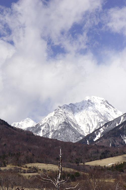 大好きな八ヶ岳の山麓へ行ってきました・・・_e0025661_5305079.jpg
